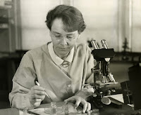 Barbara McClintock in her lab conducting genetic research