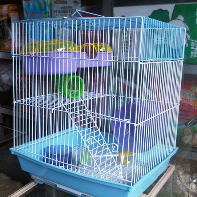 HAMSTER perlengkapan hamster aksesoris hamster kandang