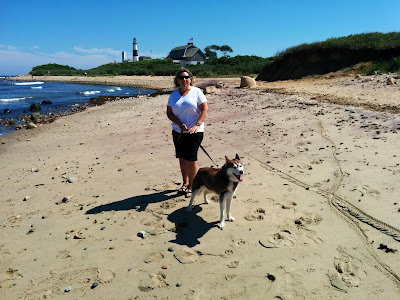 Dog friendly beach at the historic Montauk Lighthouse in Long Island NY