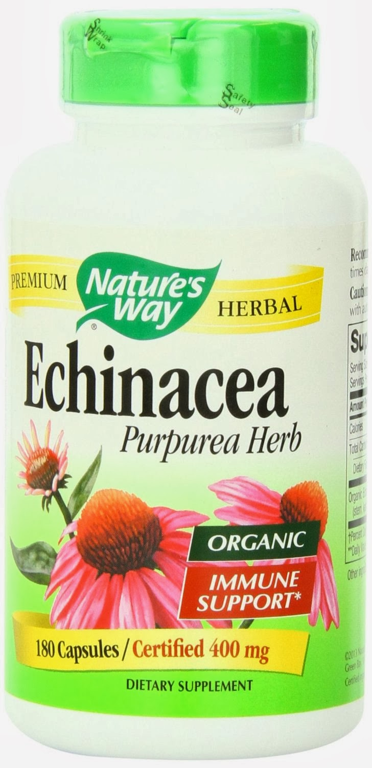 Fight off colds and flu with the popular Echinacea Herb