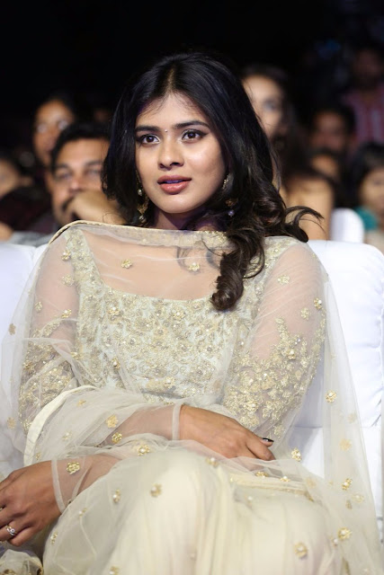 Hebah patel Stills at Nenu Naa boyfriends audio launch
