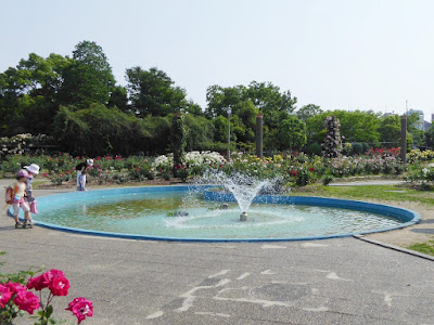 【大阪府茨木市】若園公園バラ園 噴水