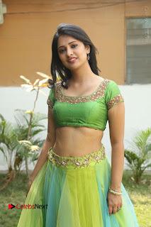 Actress Nikitha Bisht Stills in Lehenga Choli at Pochampally Ikat Art Mela Launch  0244.JPG