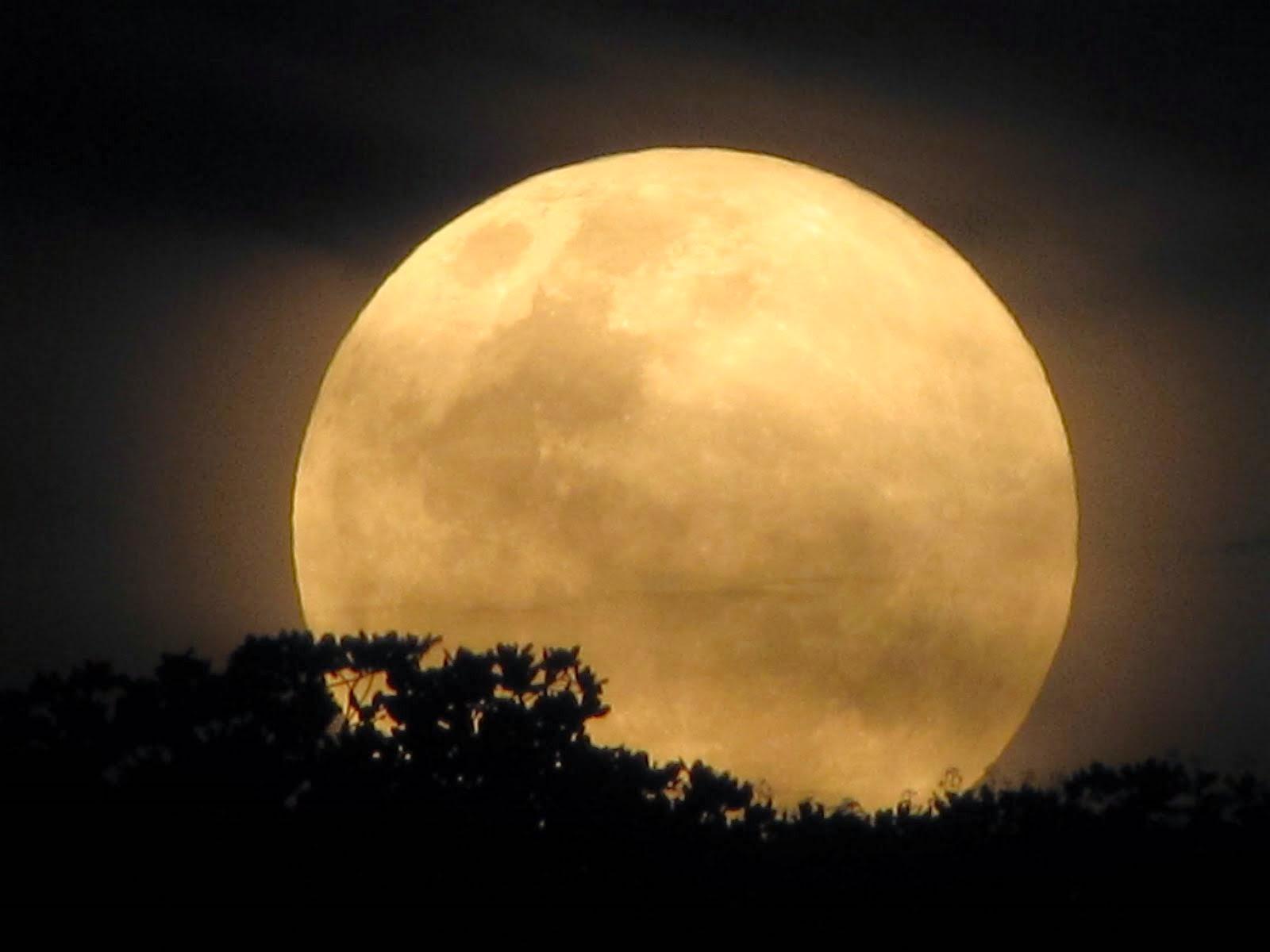 Qual A Melhor Lua Para Cortar O Cabelo Cabelos E Sonhos