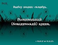 Воронежский СК до 01.11