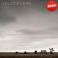 [2016] - Yellowcard