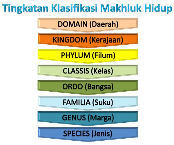 Klasifikasi Makhluk Hidup yang ketika ini dipakai Klasifikasi Makhluk Hidup