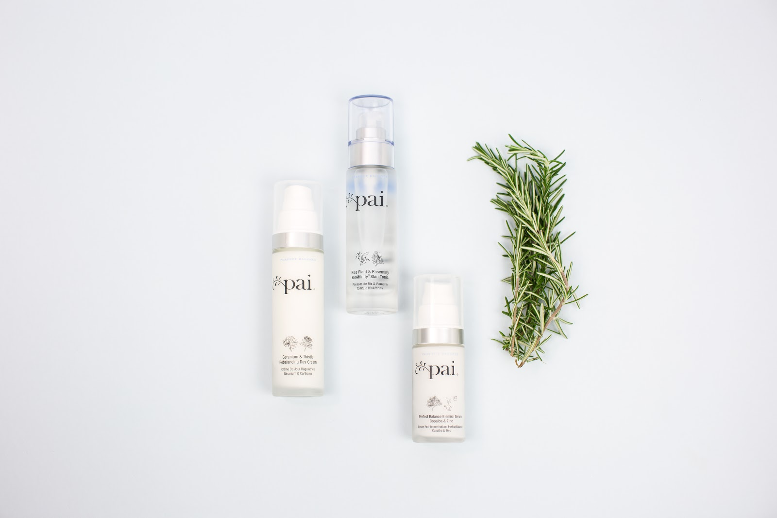 CURRENTLY TESTING: PAI SKINCARE - CRUELTY FREE + VEGAN SKINCARE YOU NEED TO TRY