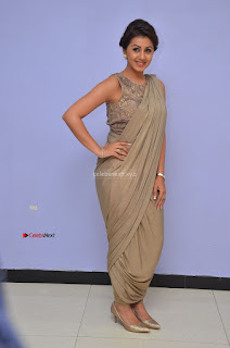Nikki Galrani in Saree 112.JPG