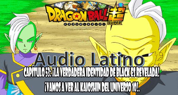 Ver capitulo 53 online, Goku viajo junto a Wiss y Bills al Universo 10 para verificar si los Kaioshin de dicho Universo.