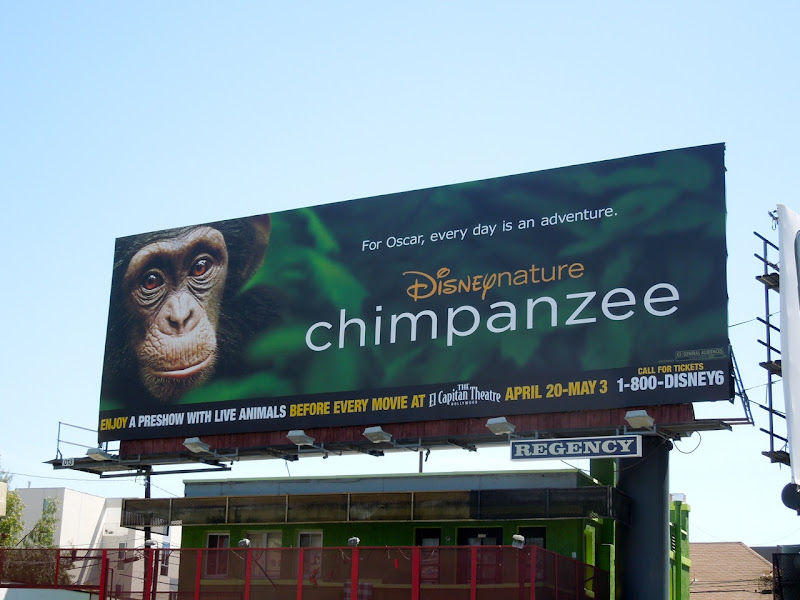 Disney Chimpanzee billboard