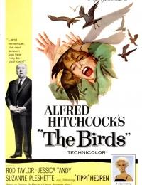 The Birds   Bmovies