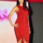 Mallika Sherawat Latest Hot Pics in Red Dress