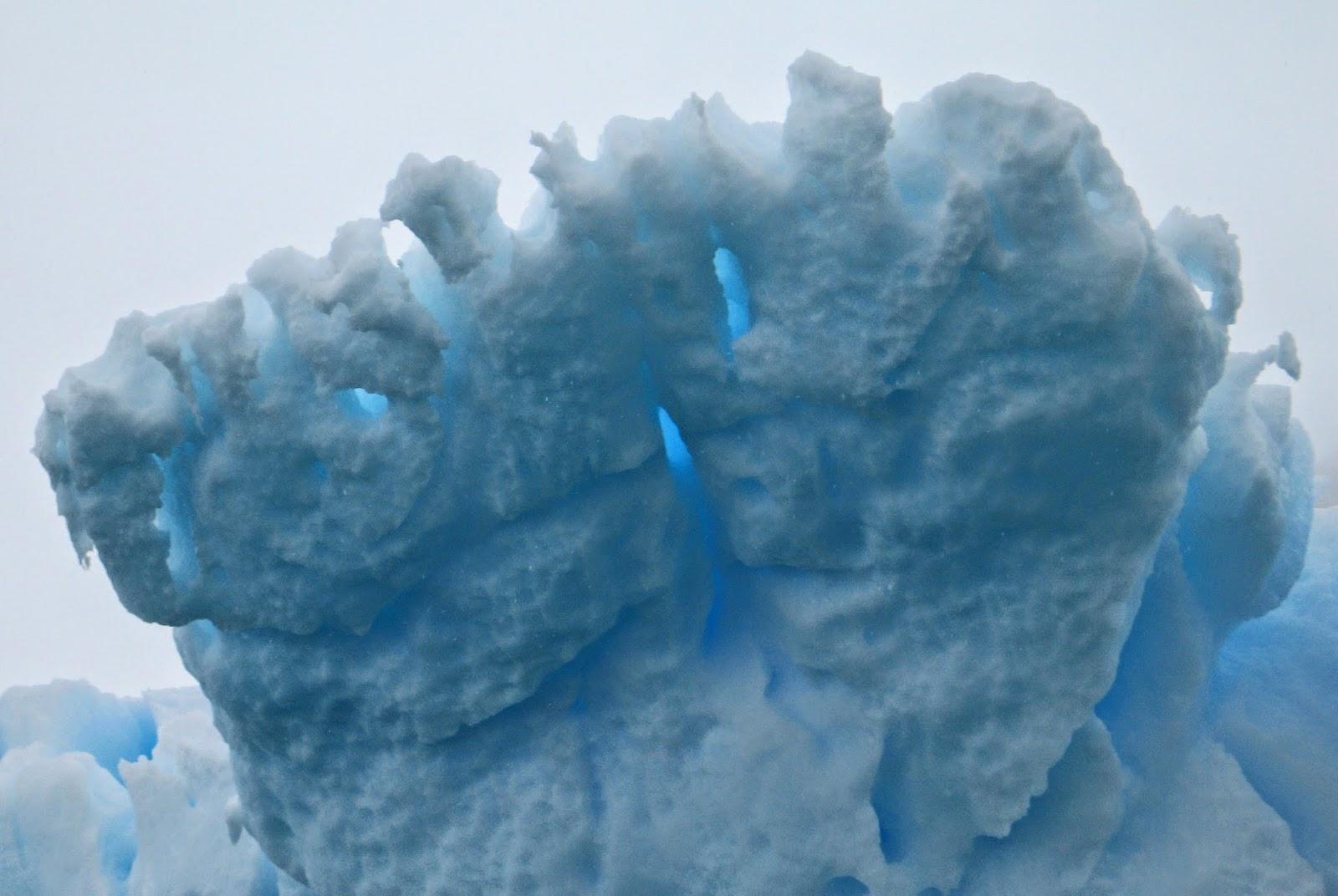 Cuverville - Antarctique - Le Boréal