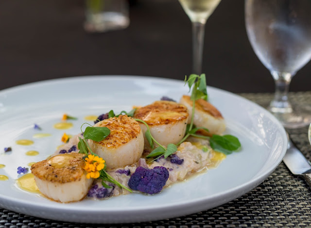 Pan Roasted Scallops from Michael's Tasting Room