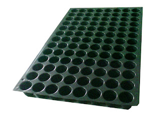 104 cell round seed tray ahmedabad gujarat