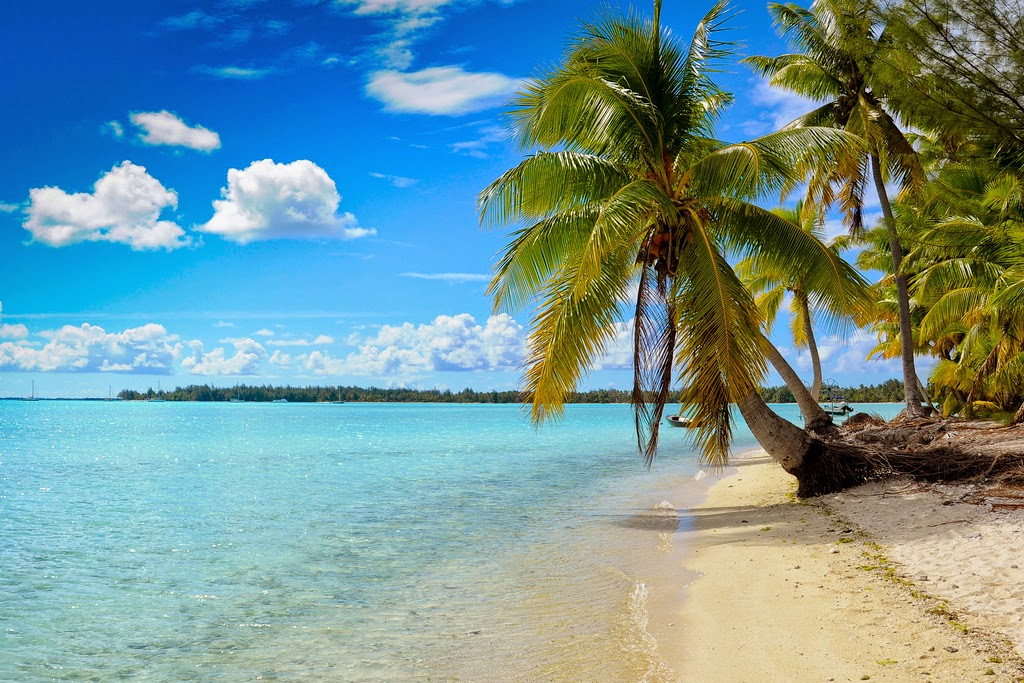 Meravigliosa Polinesia by Alfredo, via flickr