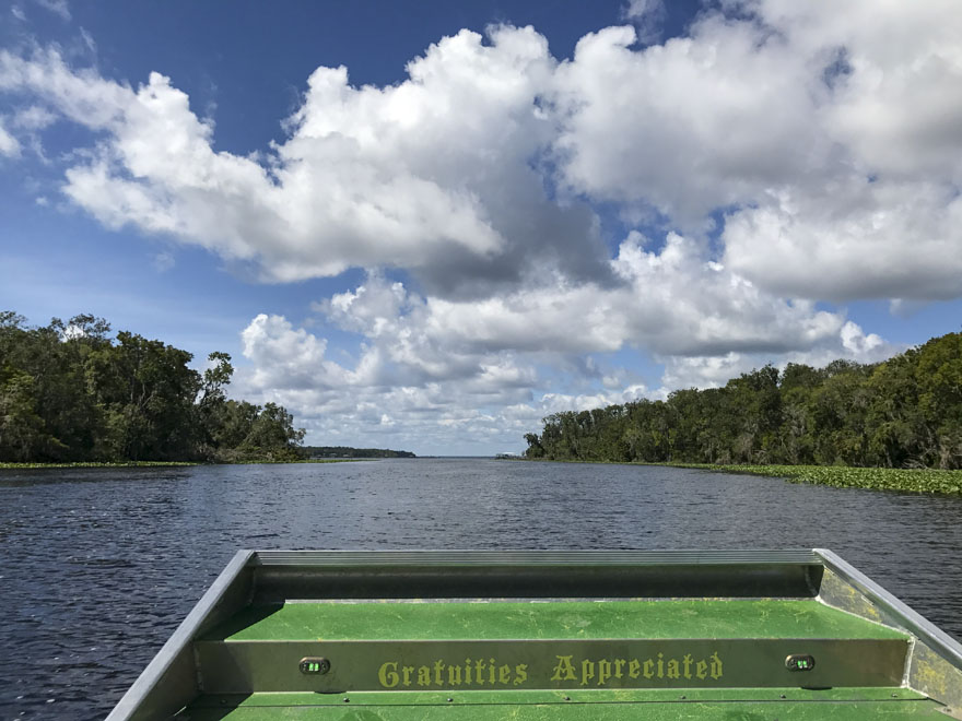 A view of the St Johns River from the Sea Serpent Air Boat