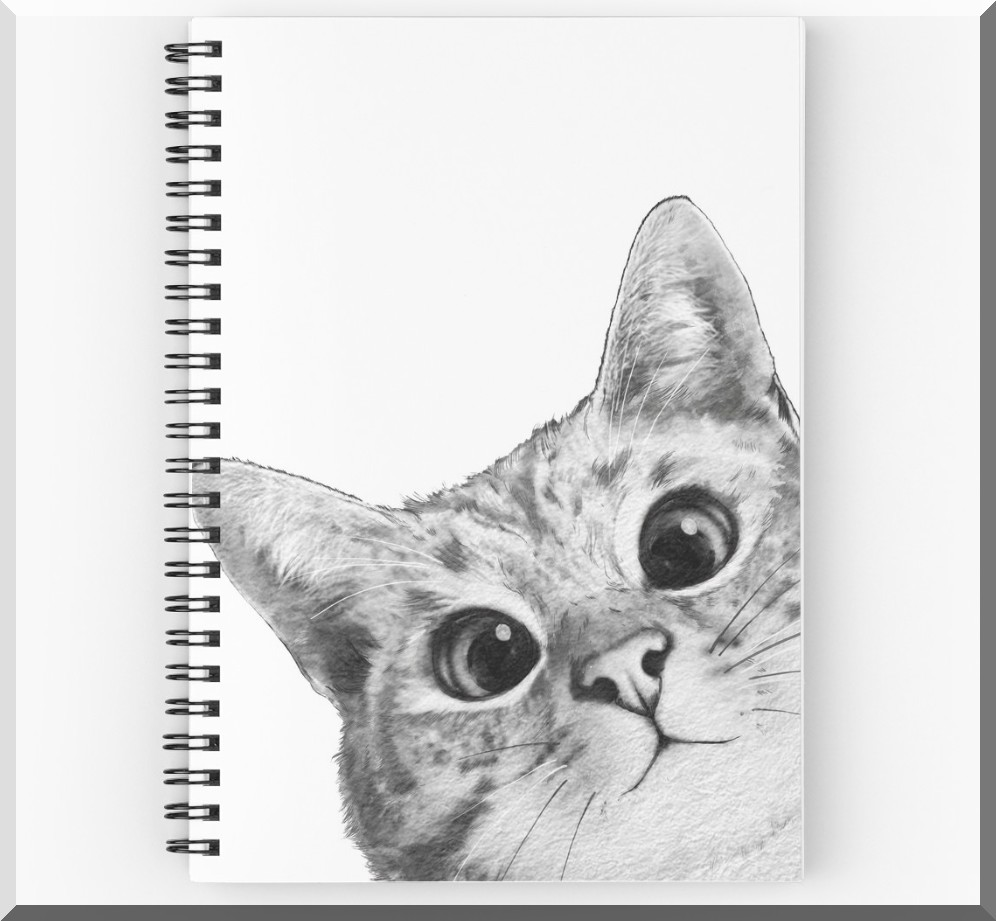 cahier-spirale-chat