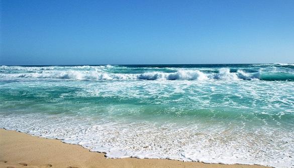 Image result for Ini yang Terjadi Jika Air Laut Tidak Asin