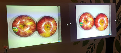 A visualiser device sends an image of two apples to two different projectors, a competitor's single-chip DLP projector on the left, and to an Epson 3LCD projector on the right.