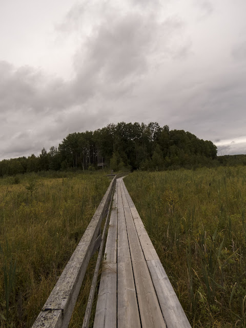 Southeastern Finland road trip: Wooden boardwalk at Siikalahti Nature Reserve in Eastern Finland