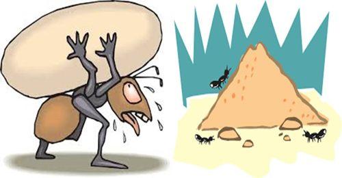 Mencari Berlian dari Ant Hill Garnet