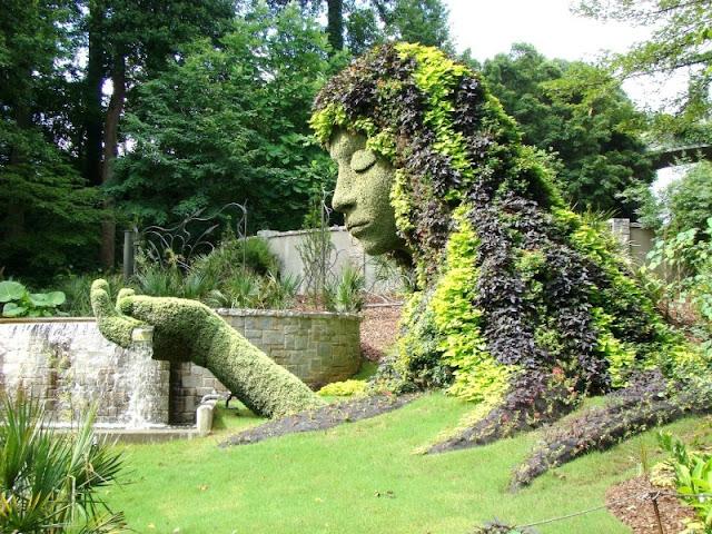 Atlanta Botanical lawn