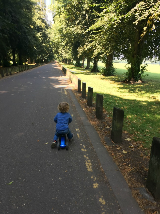 toddler-on-bike-on-road-bute-park-cardiff