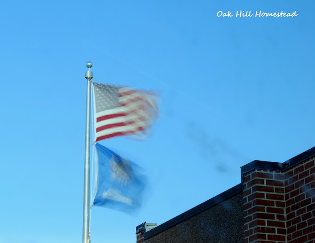 Flags flying on a windy day in a small Oklahoma town.