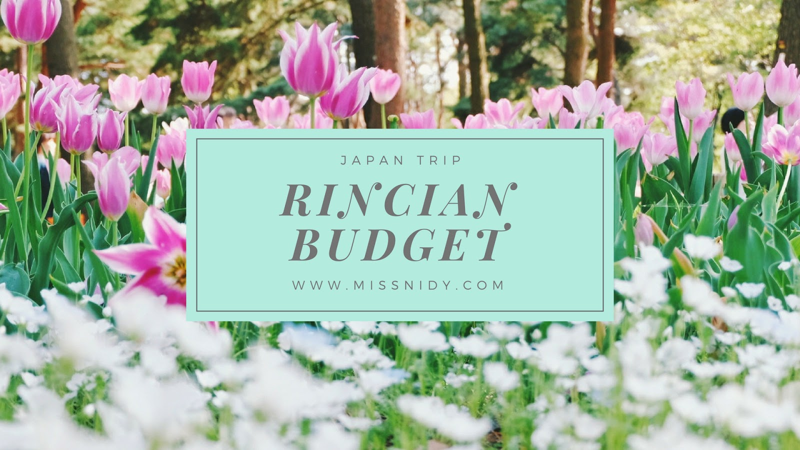 rincian budget travelling ke jepang