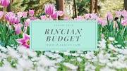 Rincian Budget Travelling ke Jepang (Spring Trip)