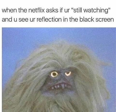 netflix funny, netflix see yourself