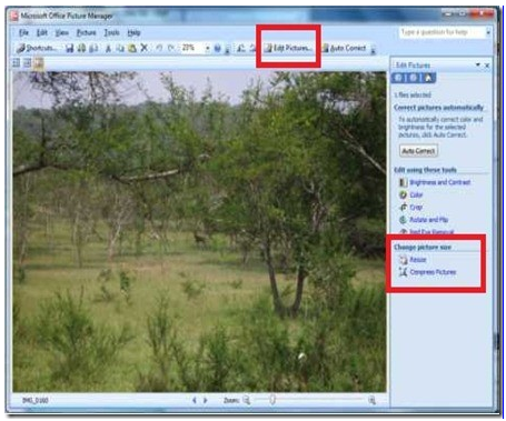 Edit Options in Microsoft Office Picture Manager