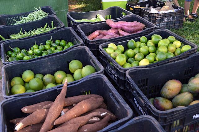 Caixas de verduras
