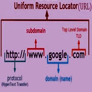 Tentang Domain