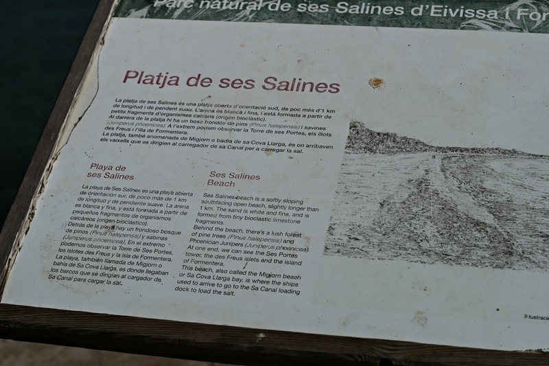 Blog + Fotografie by it's me! - Ses Salines, Ibiza - Infoschild