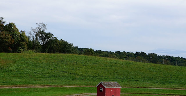 homestead farm, you pick pumpkins in maryland, apple picking maryland, butlers orchard pumpkin festival,