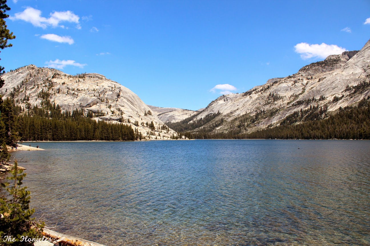 Yosemite National Park, les belles choses commencent