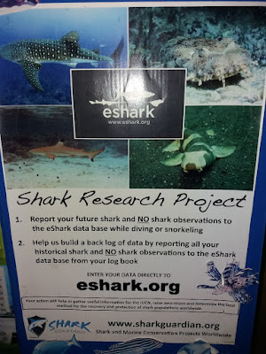 Photo of a leaflet about Shark Research Project