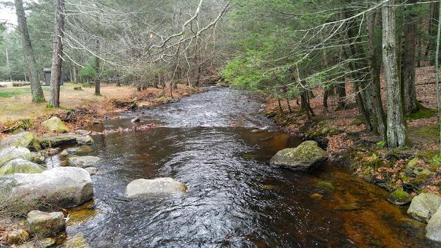 walk by the stream