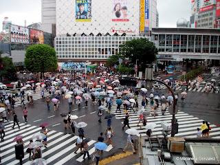 CRUCE DE SHIBUYA, TOKIO. JAPÓN