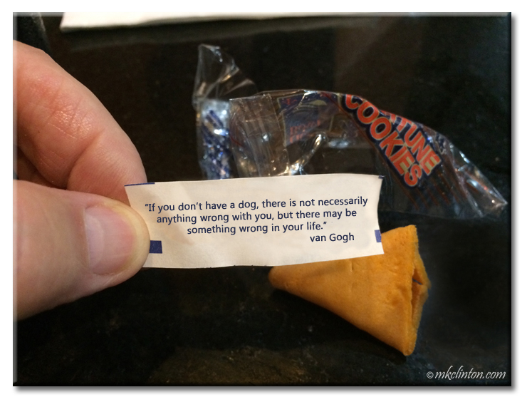 Fortune cookie with van Gogh dog quote
