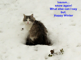 Winter e-cards images pictures free download