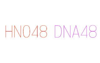 Pembentukan HNO48 Hanoi dan DNA48 Danang itu hoax
