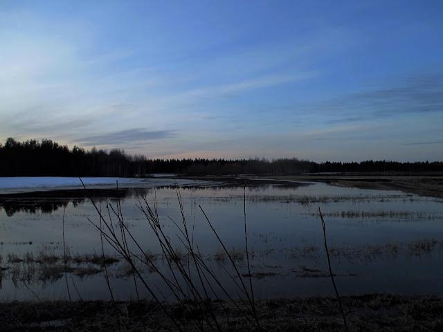 kevätpelto, vettä pellolla
