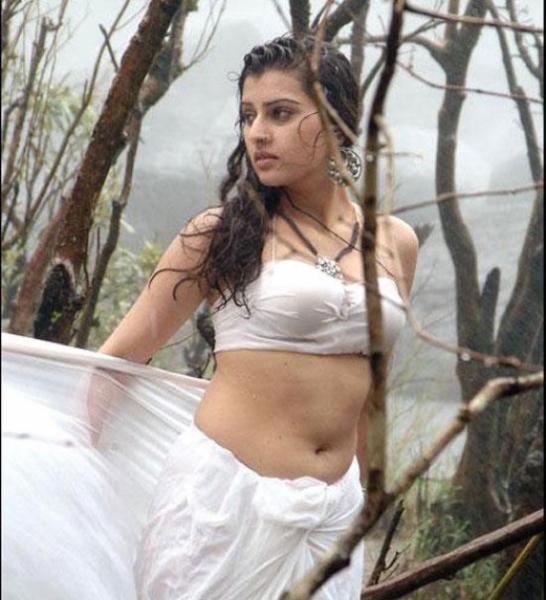 South Indian Actress Hot Navel Show Photos