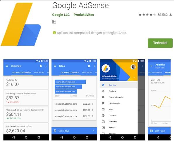 Aplikasi Google Adsense Untuk Ngeblog