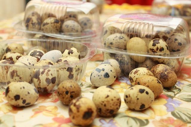 Cara Menciptakan Telur Asin Burung Puyuh Dan Nya