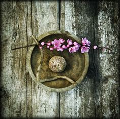 aged bowl, stone, twig, cherry blossoms